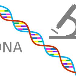 遺伝子検査 始めました!!